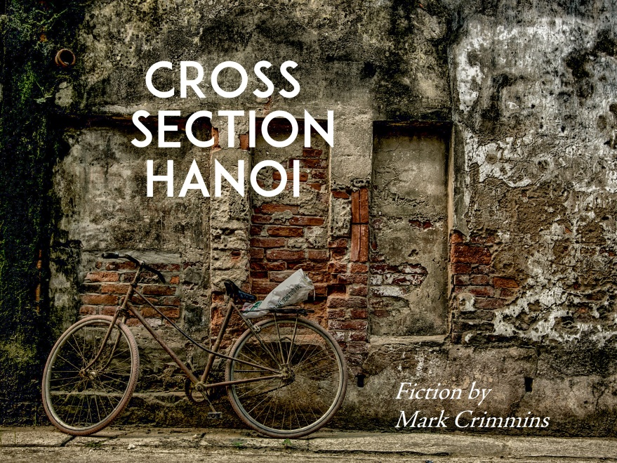 Cross Section Hanoi title Card 1
